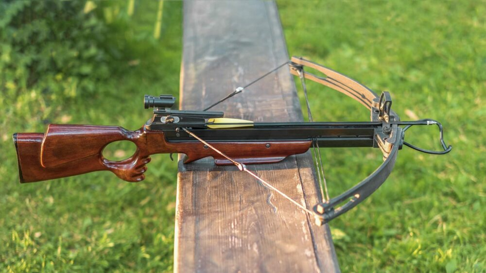Are Crossbows Better Than Bows?