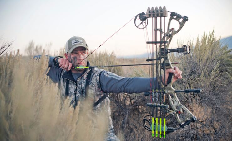 How to Choose the Best Arrows for Hunting