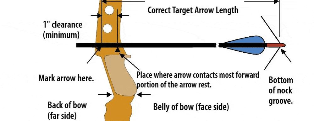 What is the average draw weight of a bow